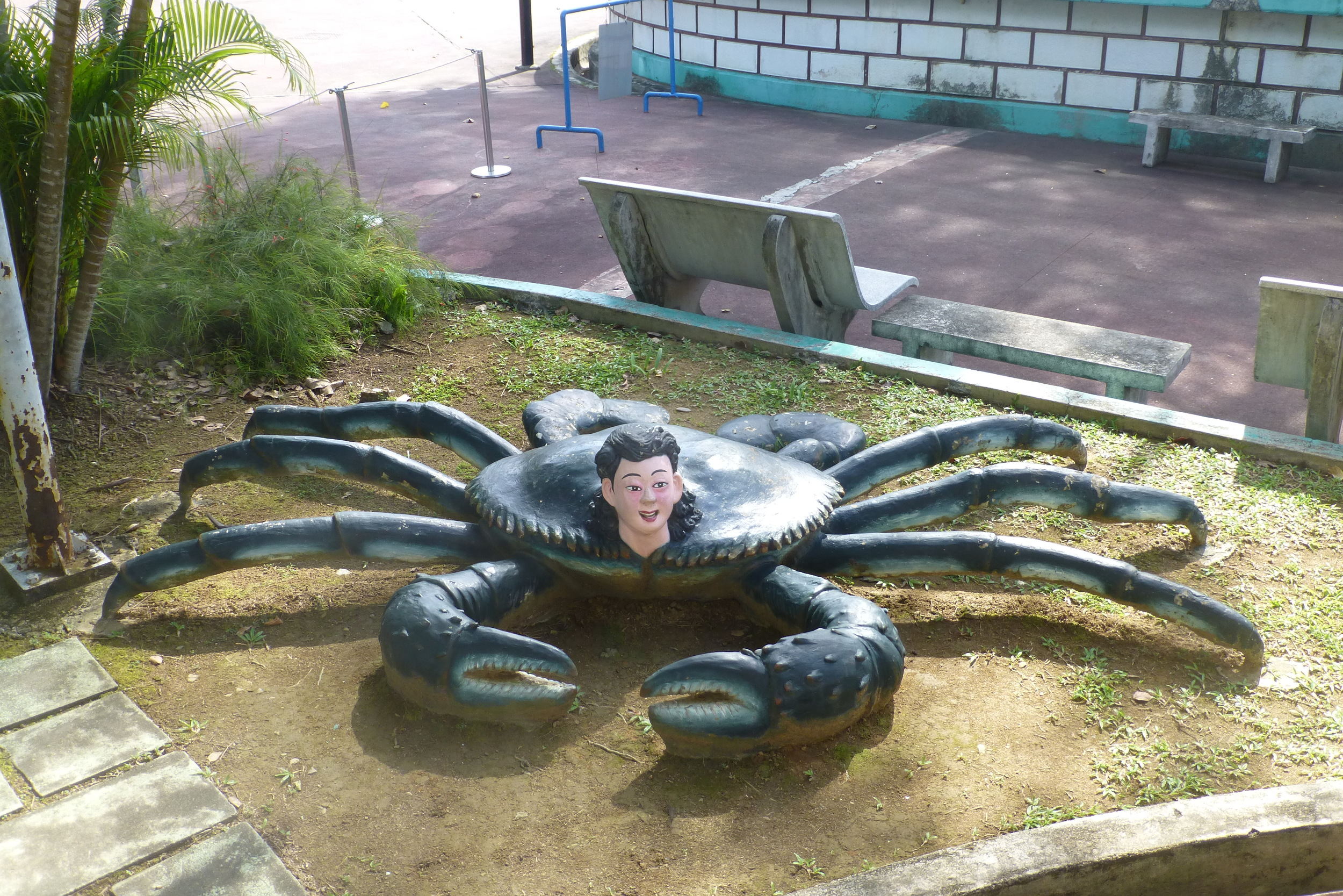 CRAB HEADED BOY - A PERSONAL FAVOURITE