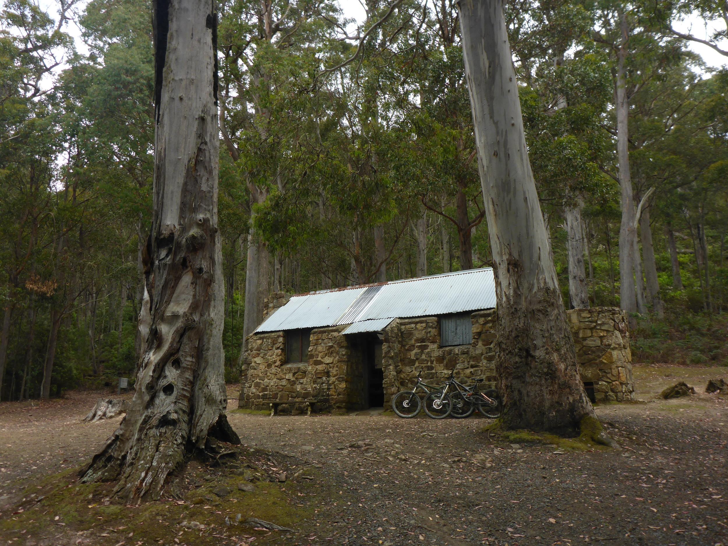 junction cabin