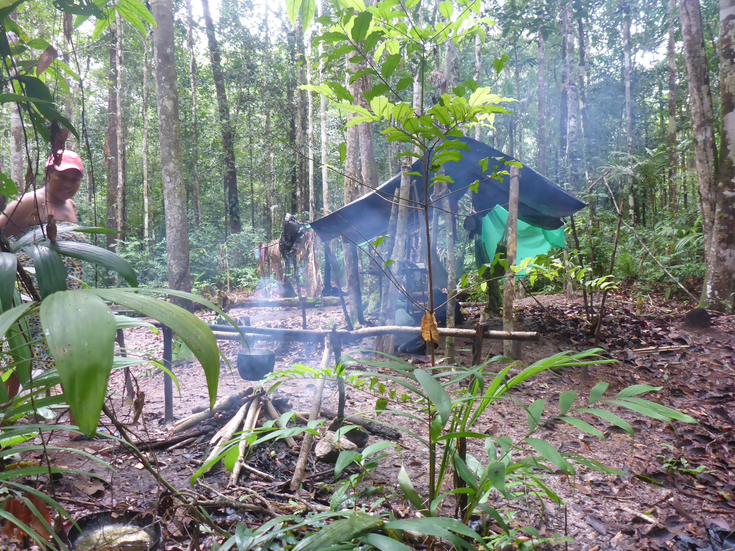 the bush camp