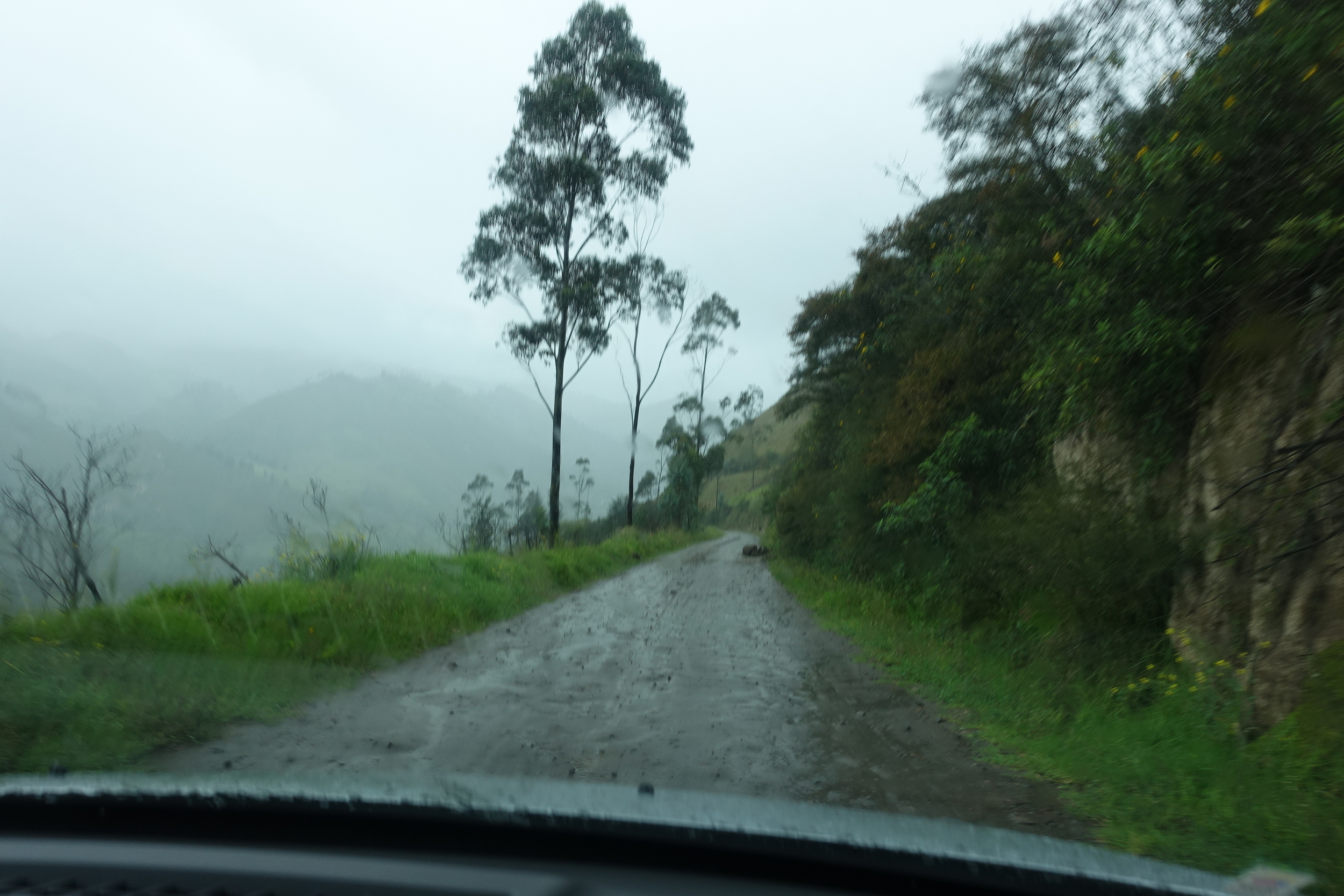 the road to isinlivi