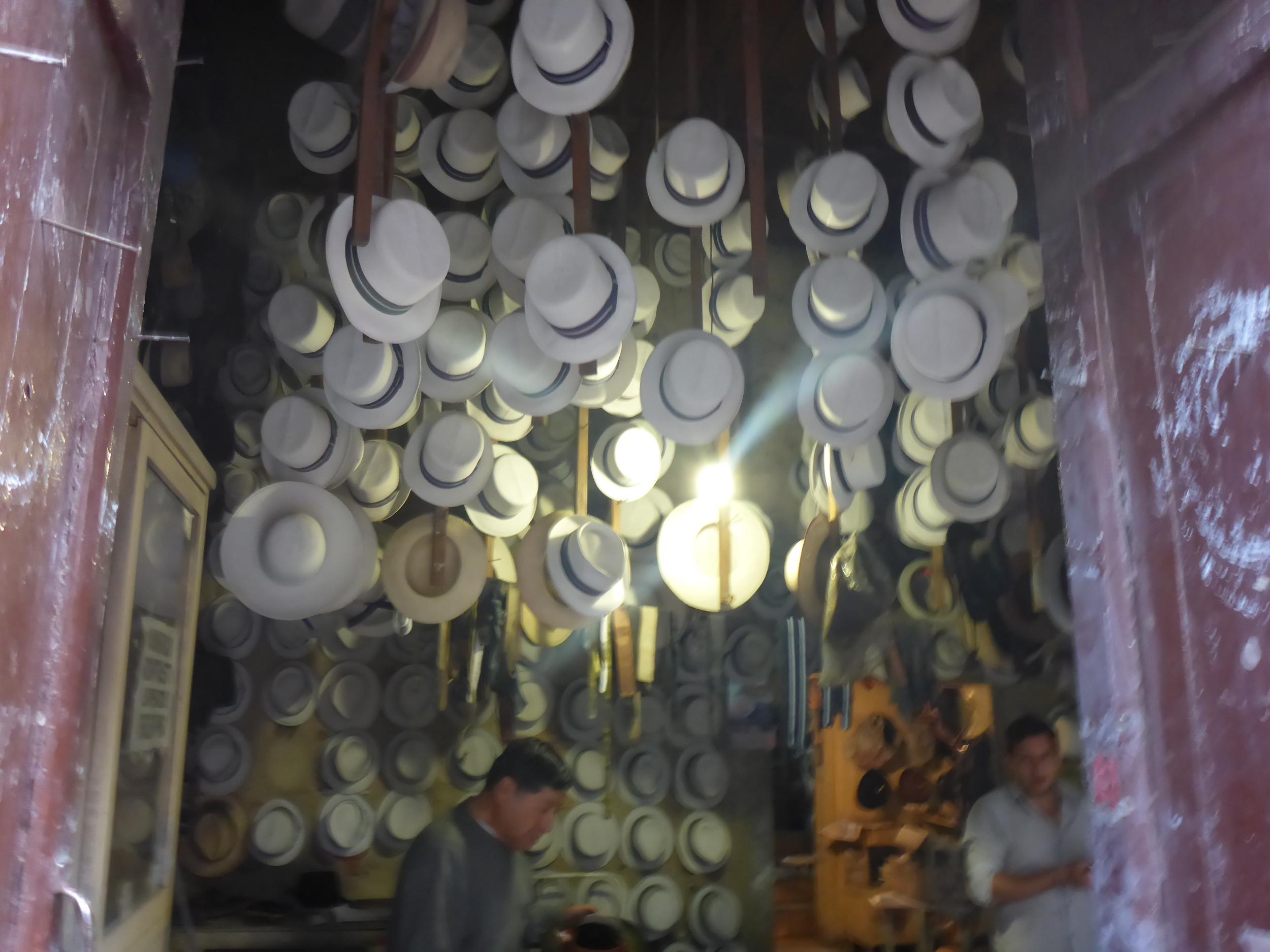 panama hats - cuenca