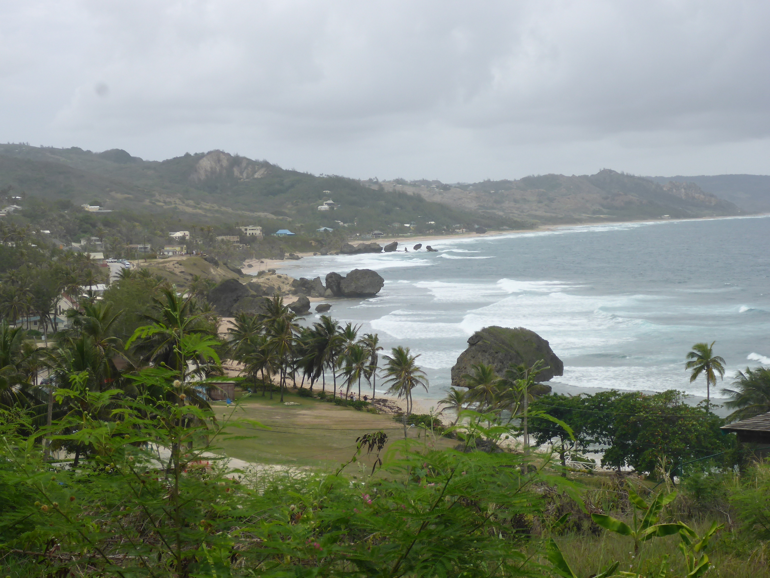 the coast at bathsheba
