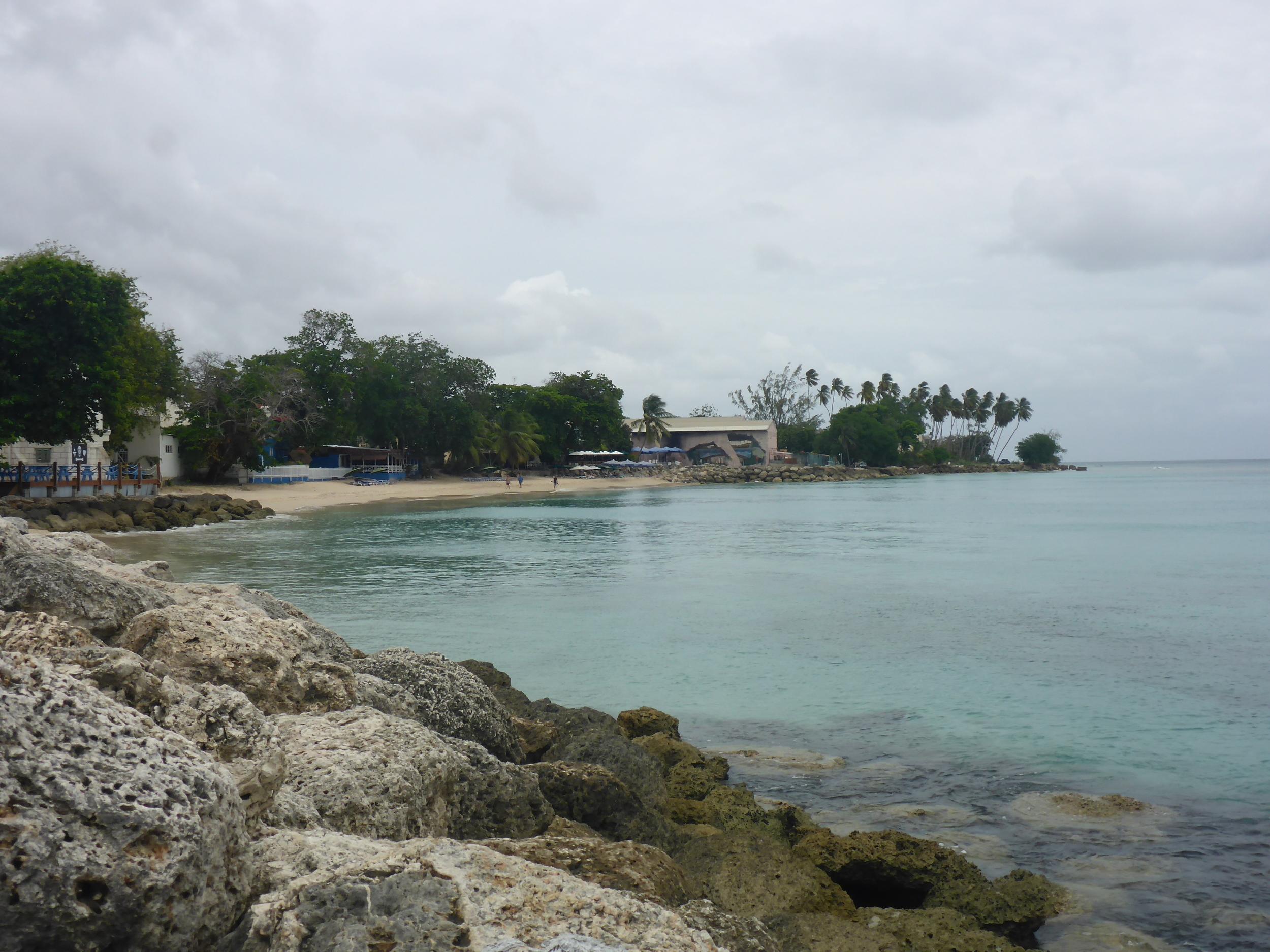 beach at speightstown