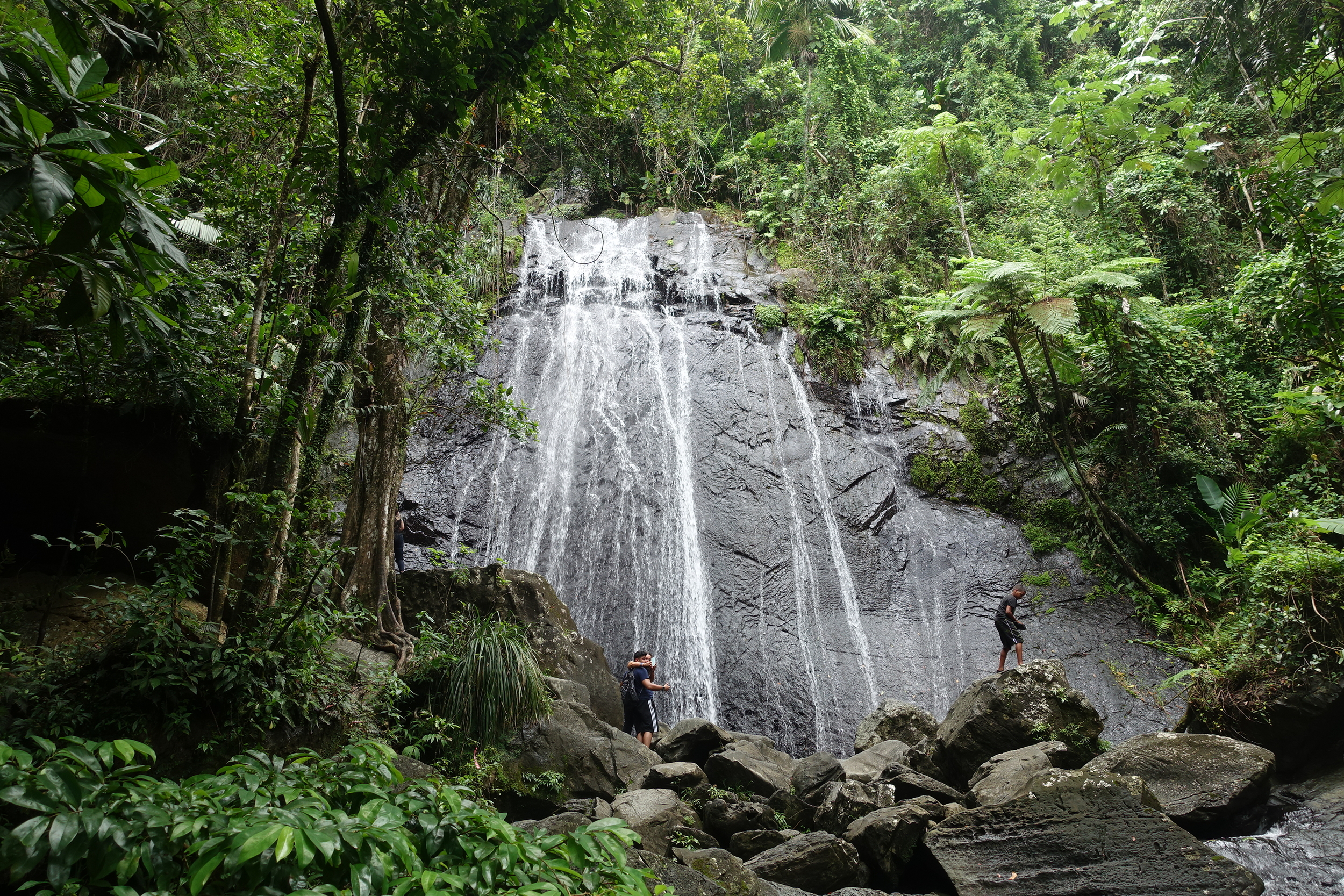 falls, el yunque