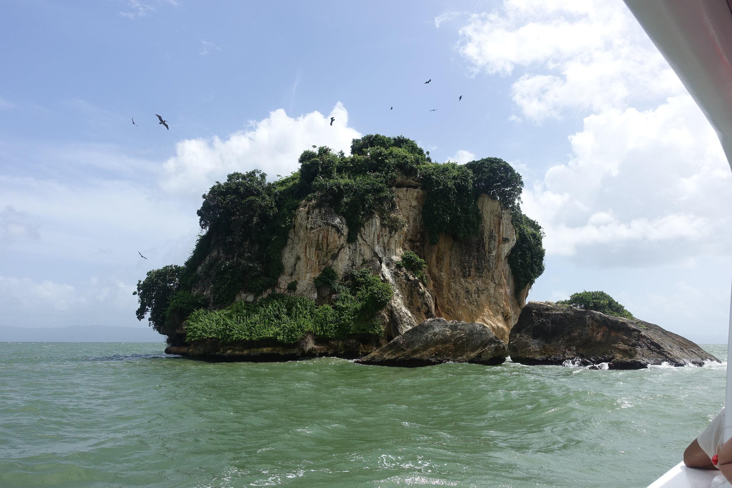 island of birds