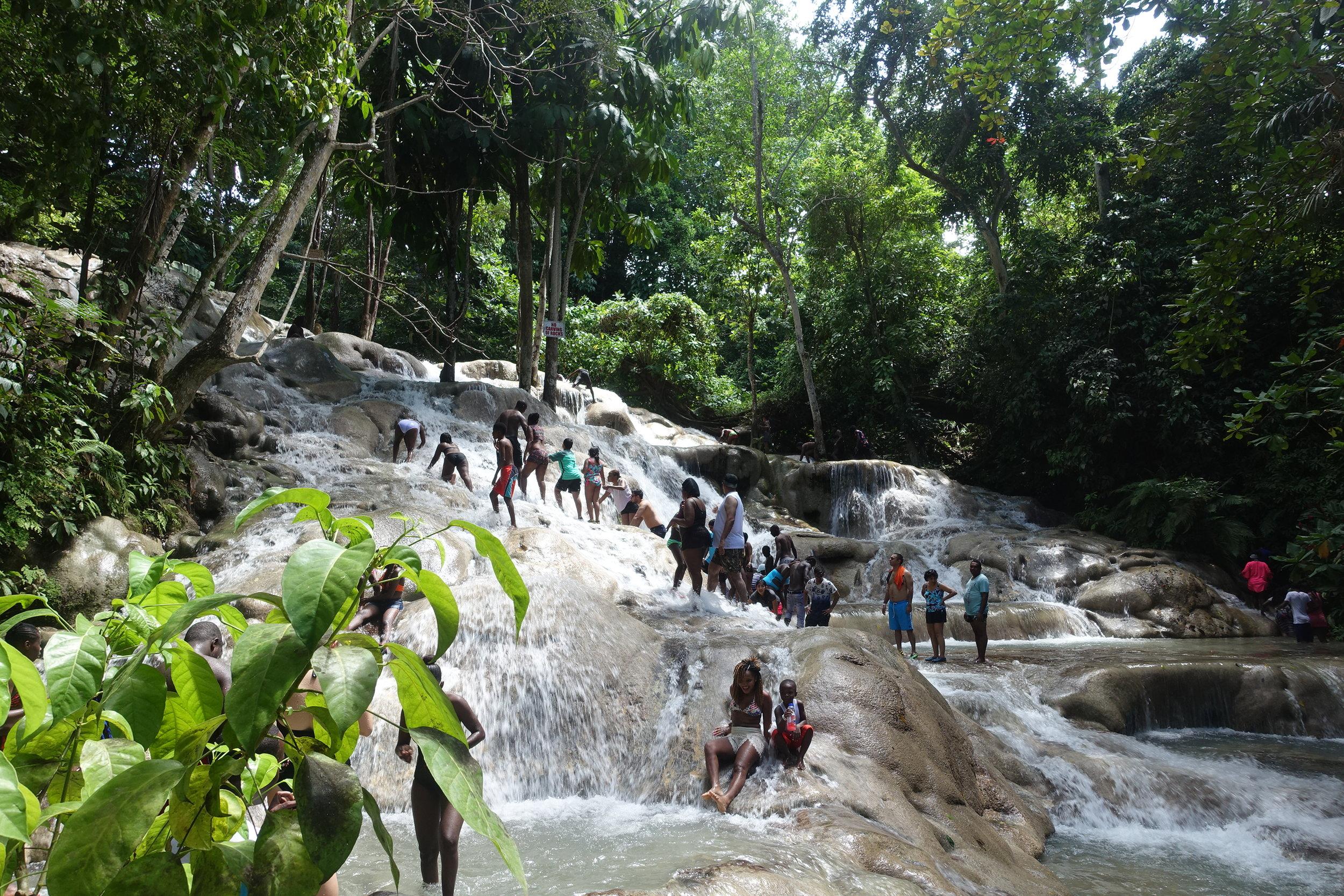 scaling dunn's river falls
