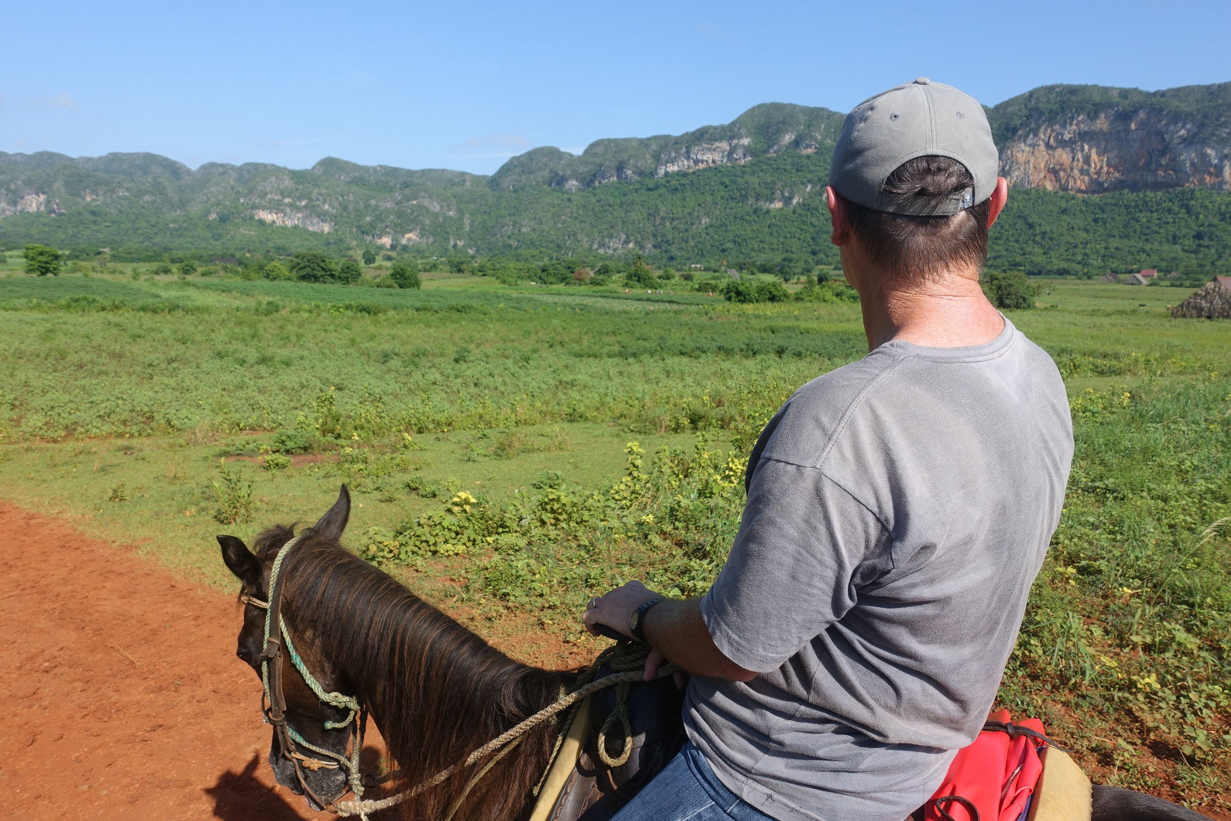 horse riding in vinales organised through our casa