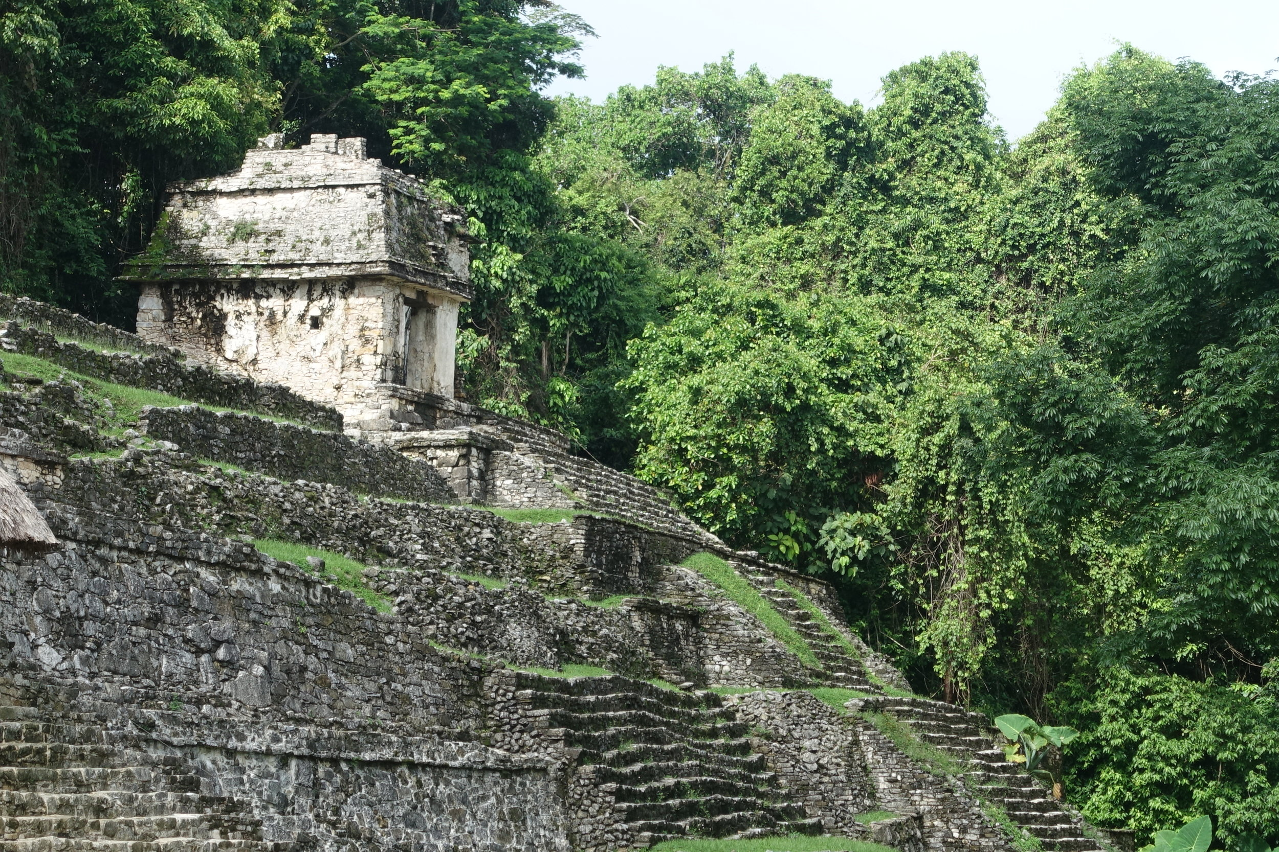 part of the temple of the inscriptions, palenque