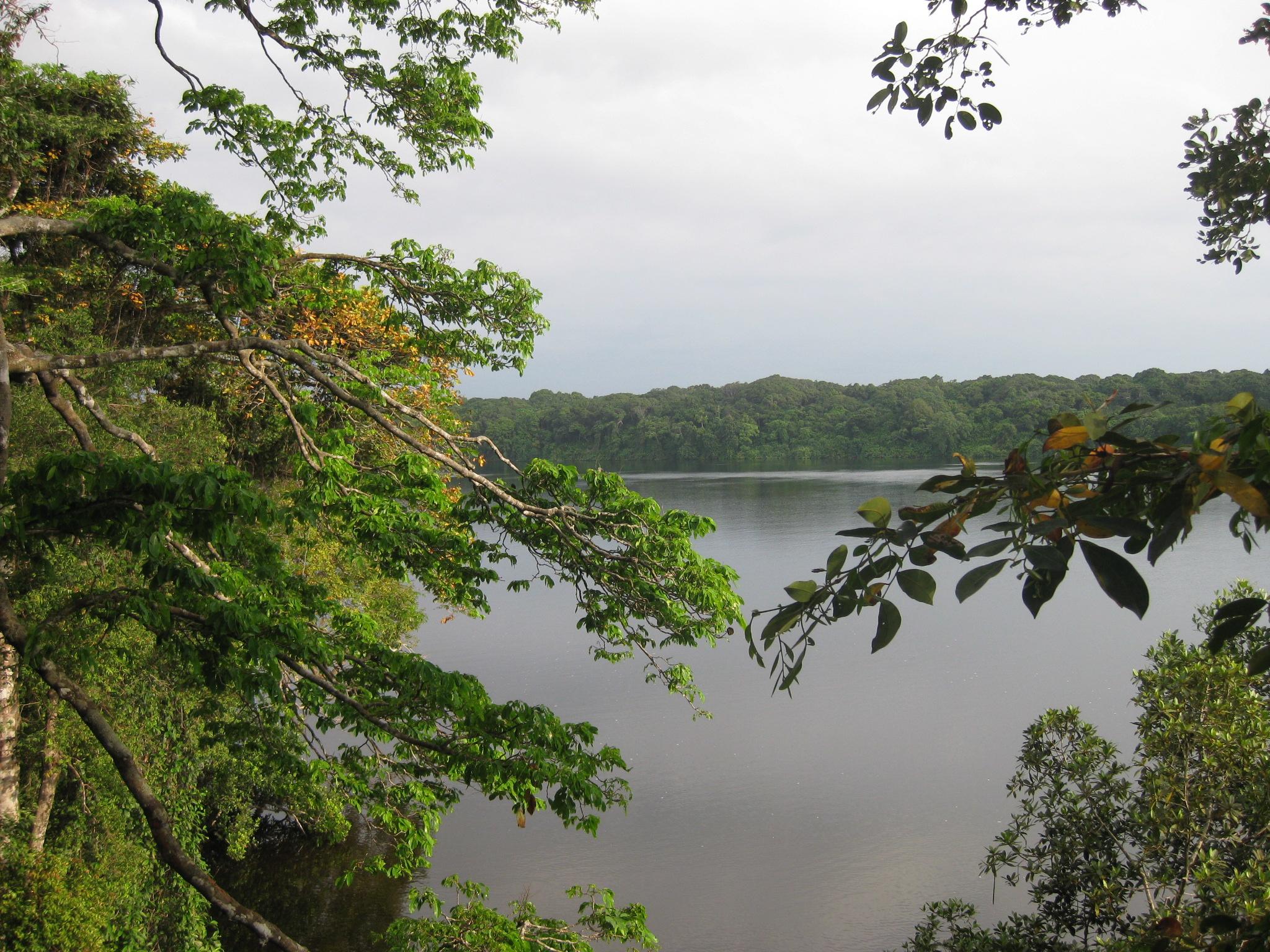 ndogo lagoon - loango national park
