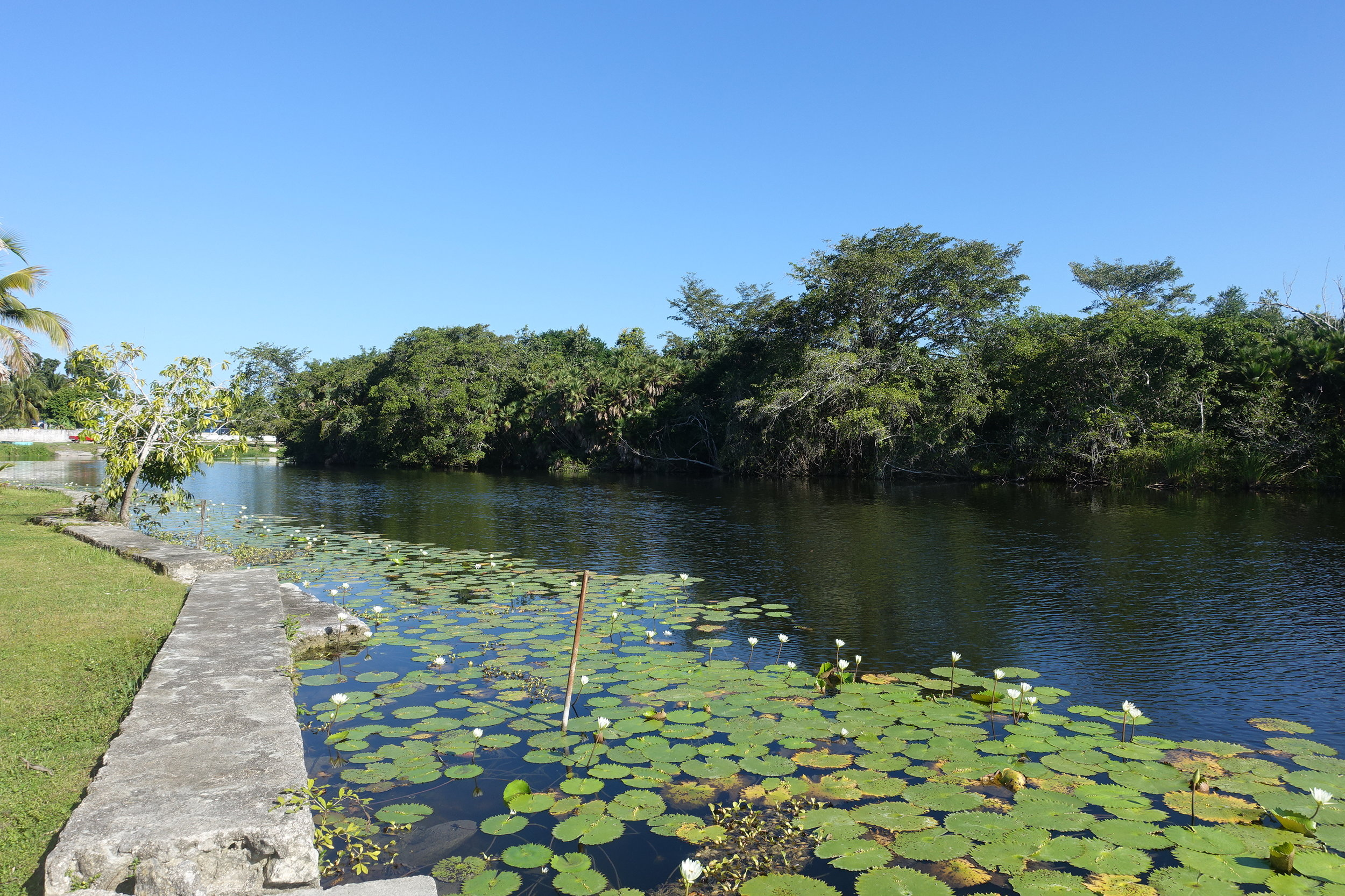the new river at lamanai riverside retreat