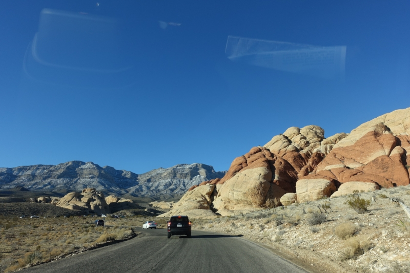 we had plenty of company on the red rock canyon scenic drive