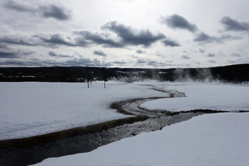 a steaming thermal river in yellowstone