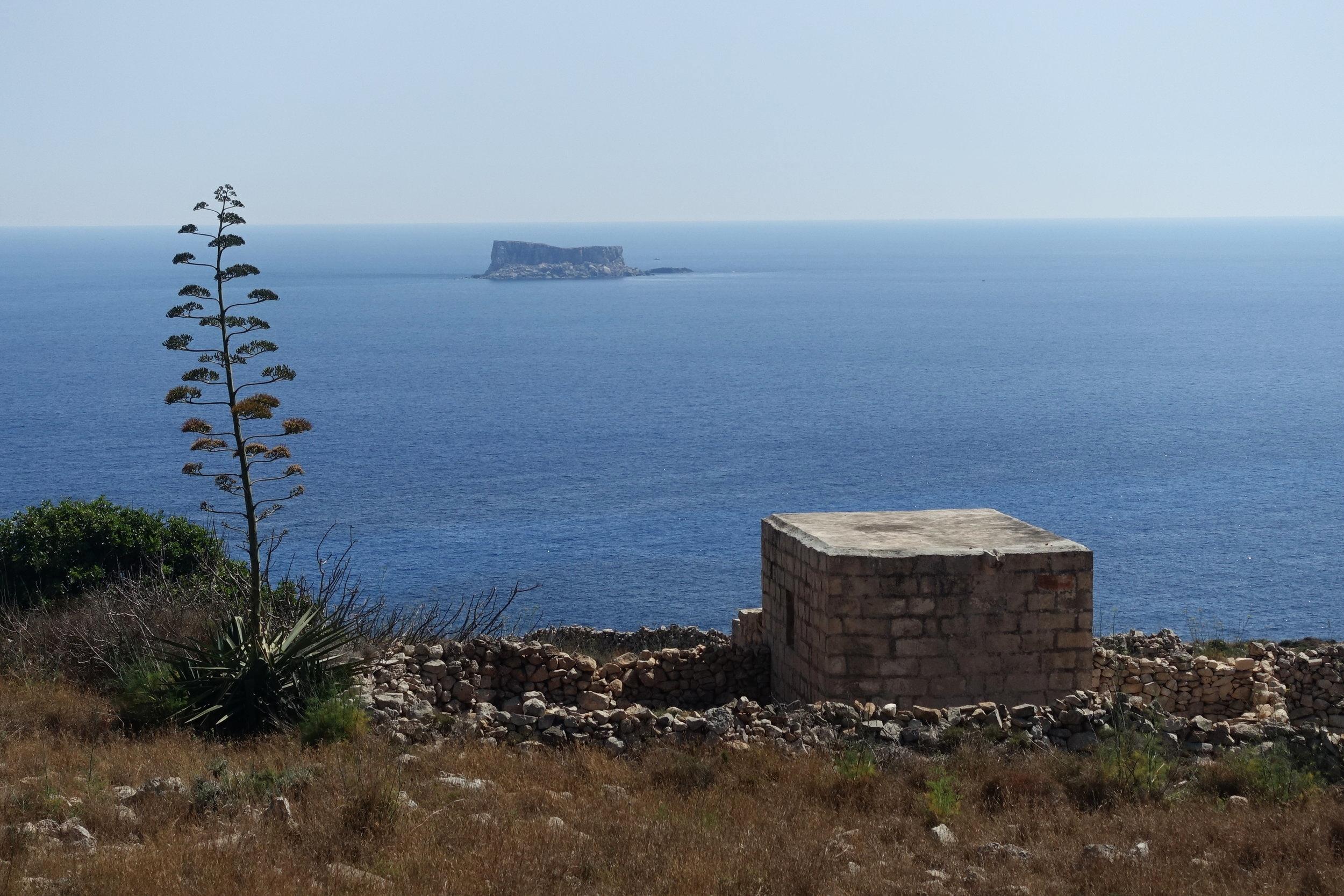 the island of filfla off the south coast