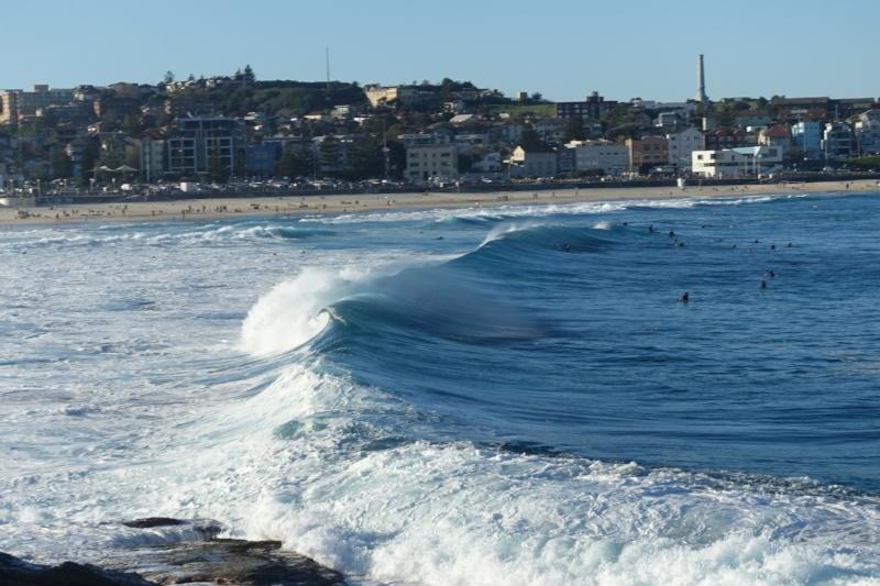 surf at bondi