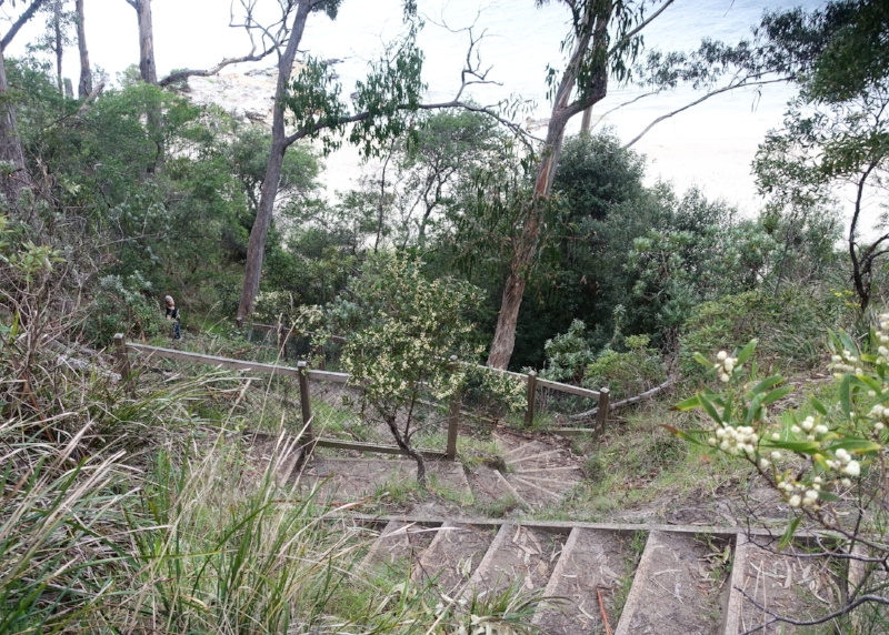 the steps down to tyndall beach