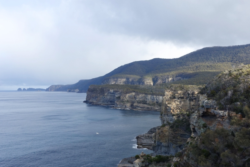 tasman peninsula sea cliffs