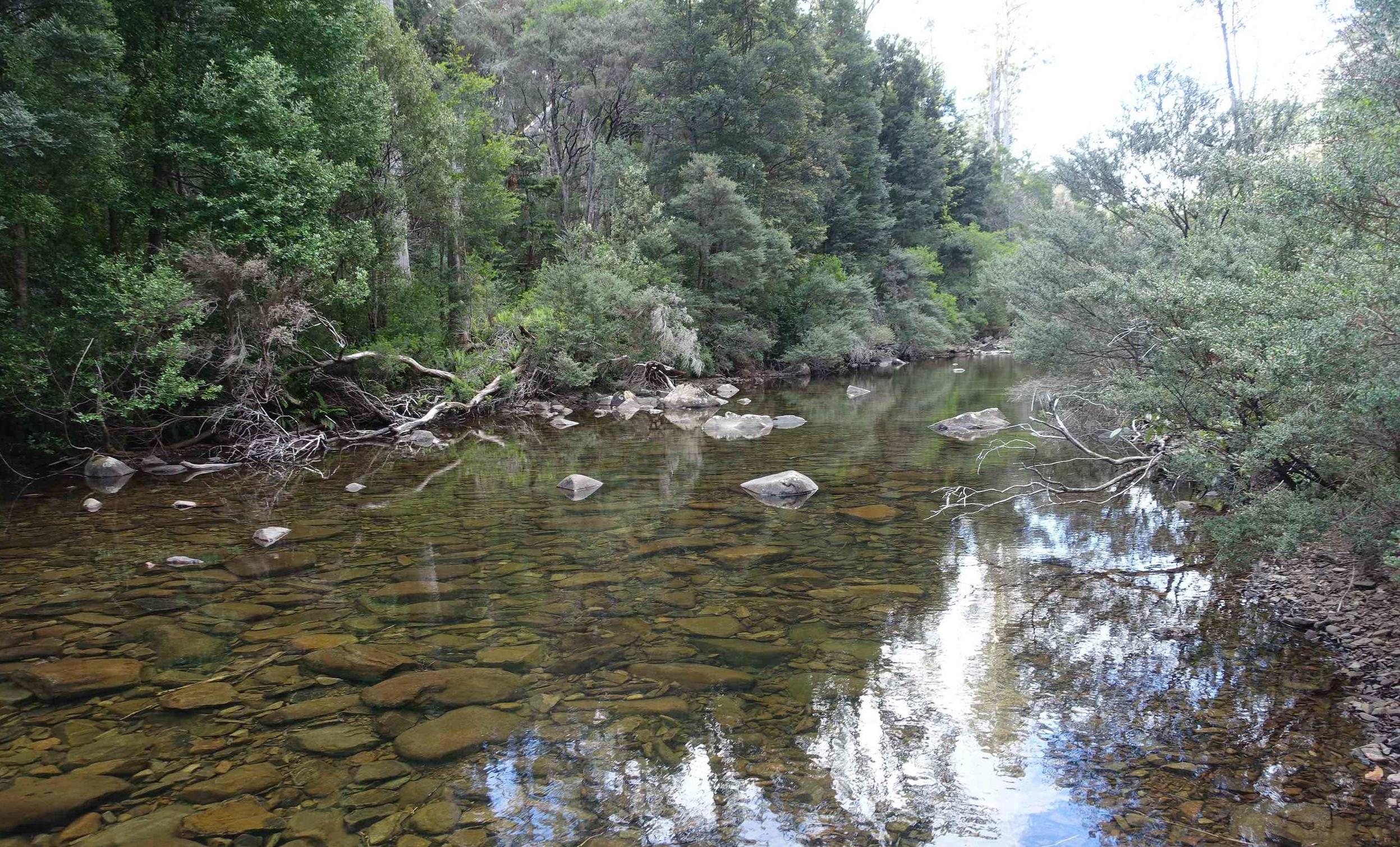 upper douglas river beside the campsite