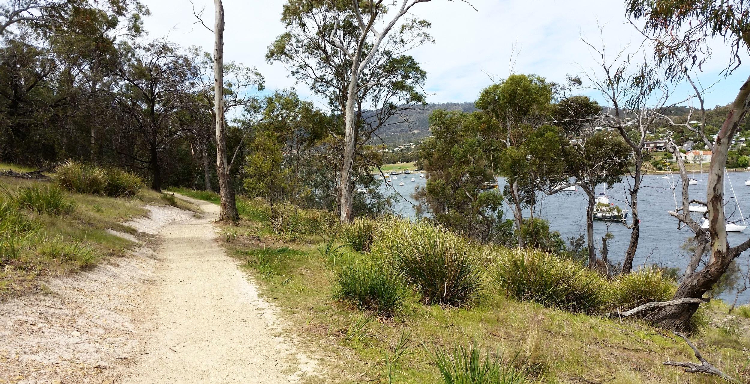 shag bay walking trail