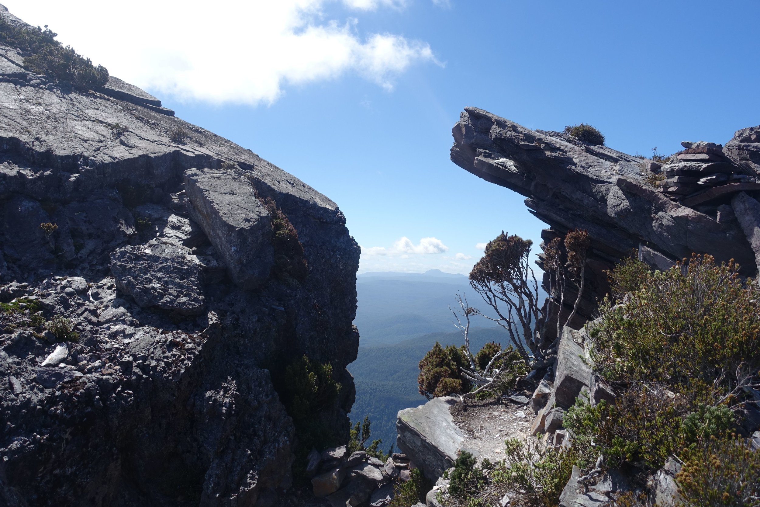 on mount murchison