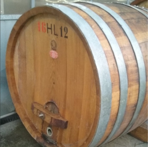 Our second hand ex-Chanti Foudre.