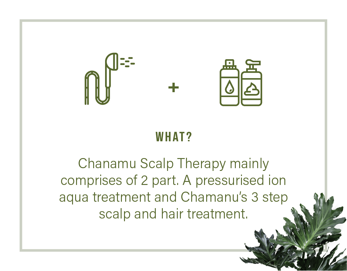What is Chanamu Scalp Therapy