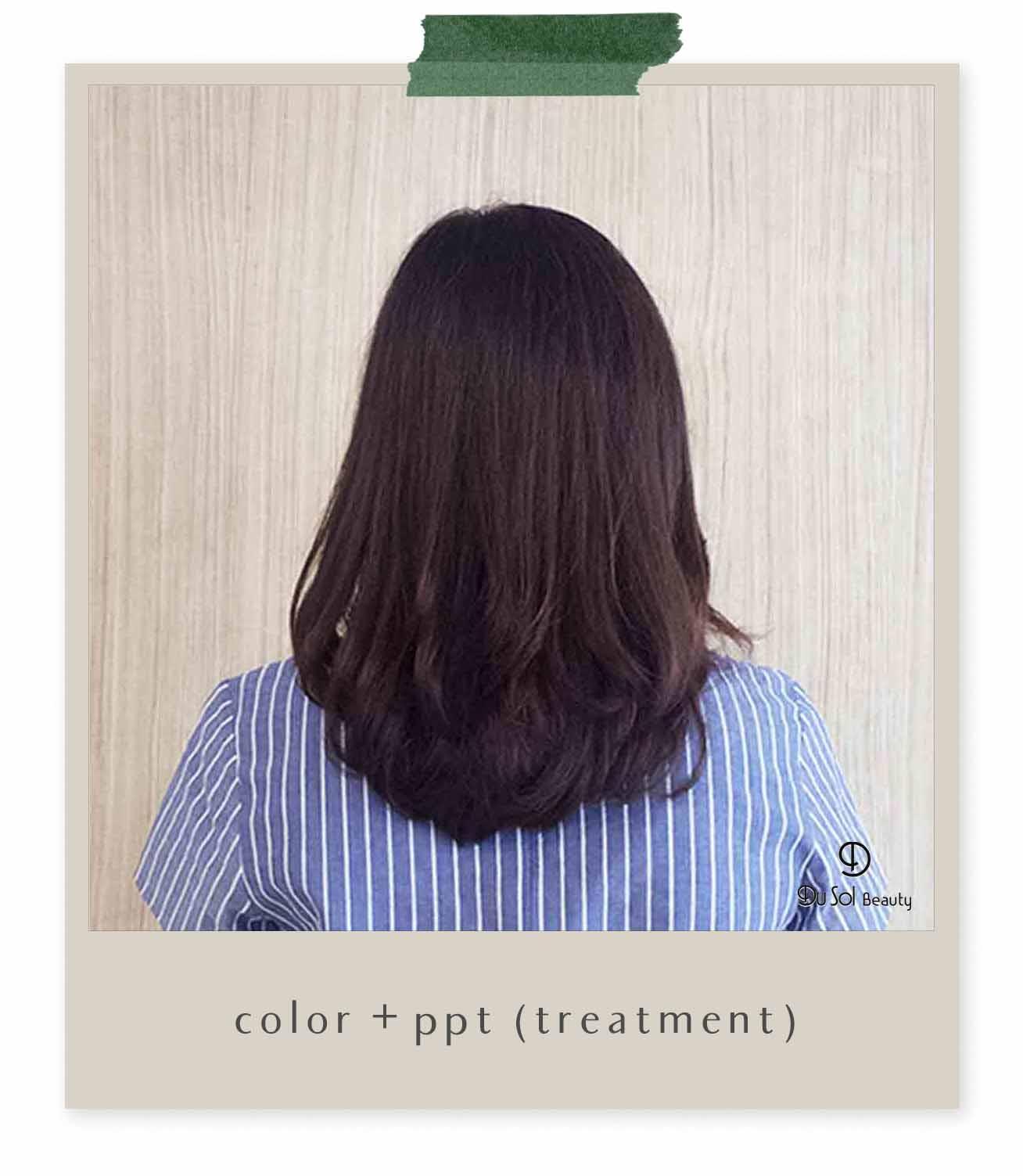 Light Ash Brown Color + PPT
