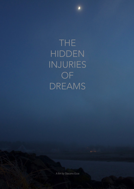 hidden injuries of dreams poster.jpg