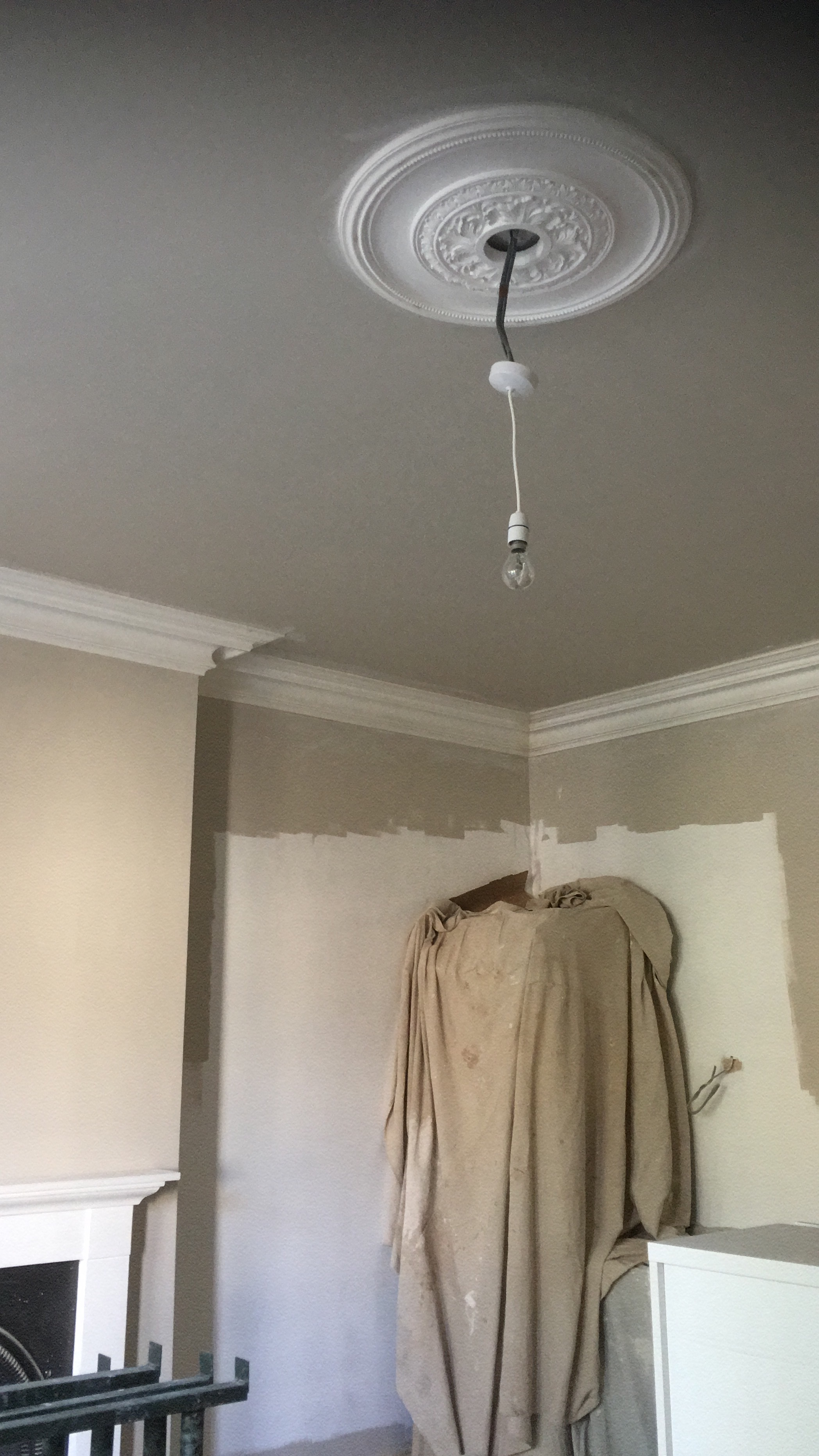 Cornicing and rose fitted by Manor Ceilings