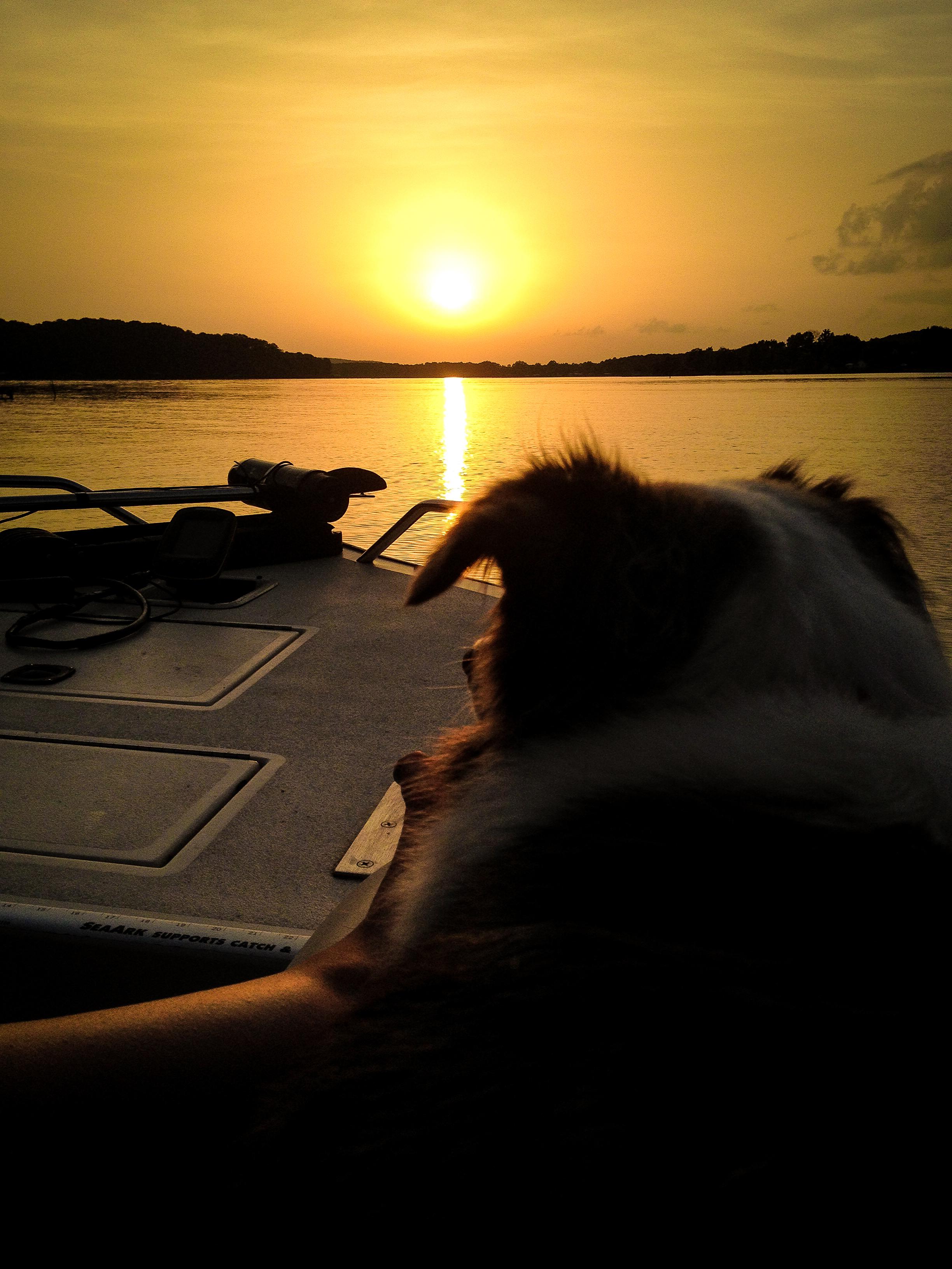 Eveinging boat ride-1.jpg