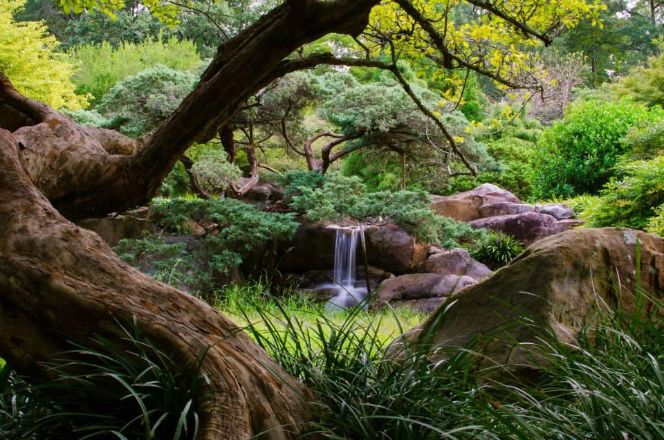 Bham Botanical Gardens 2.jpg