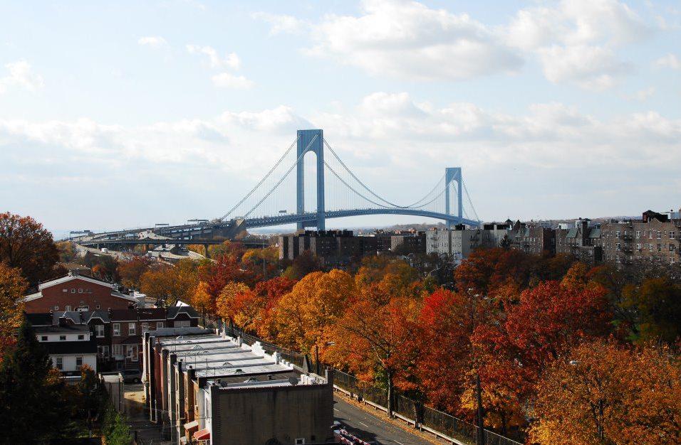 NYC fall window view.jpg