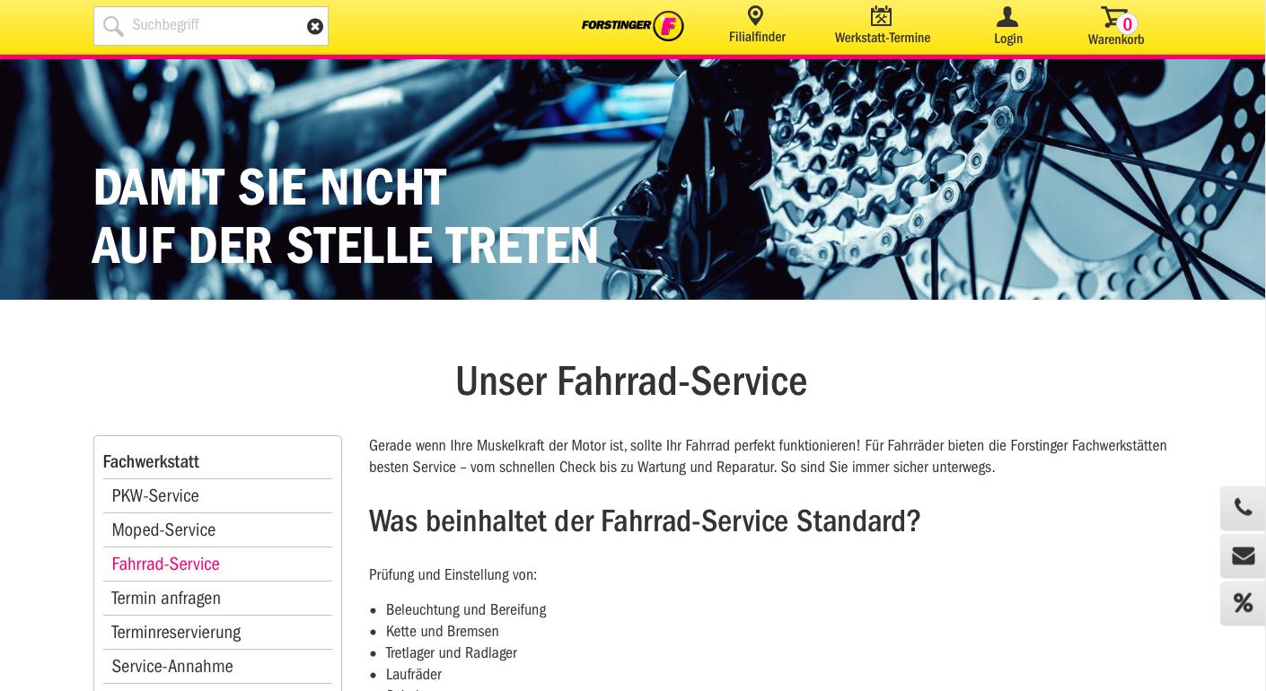 Website forstinger.com 5
