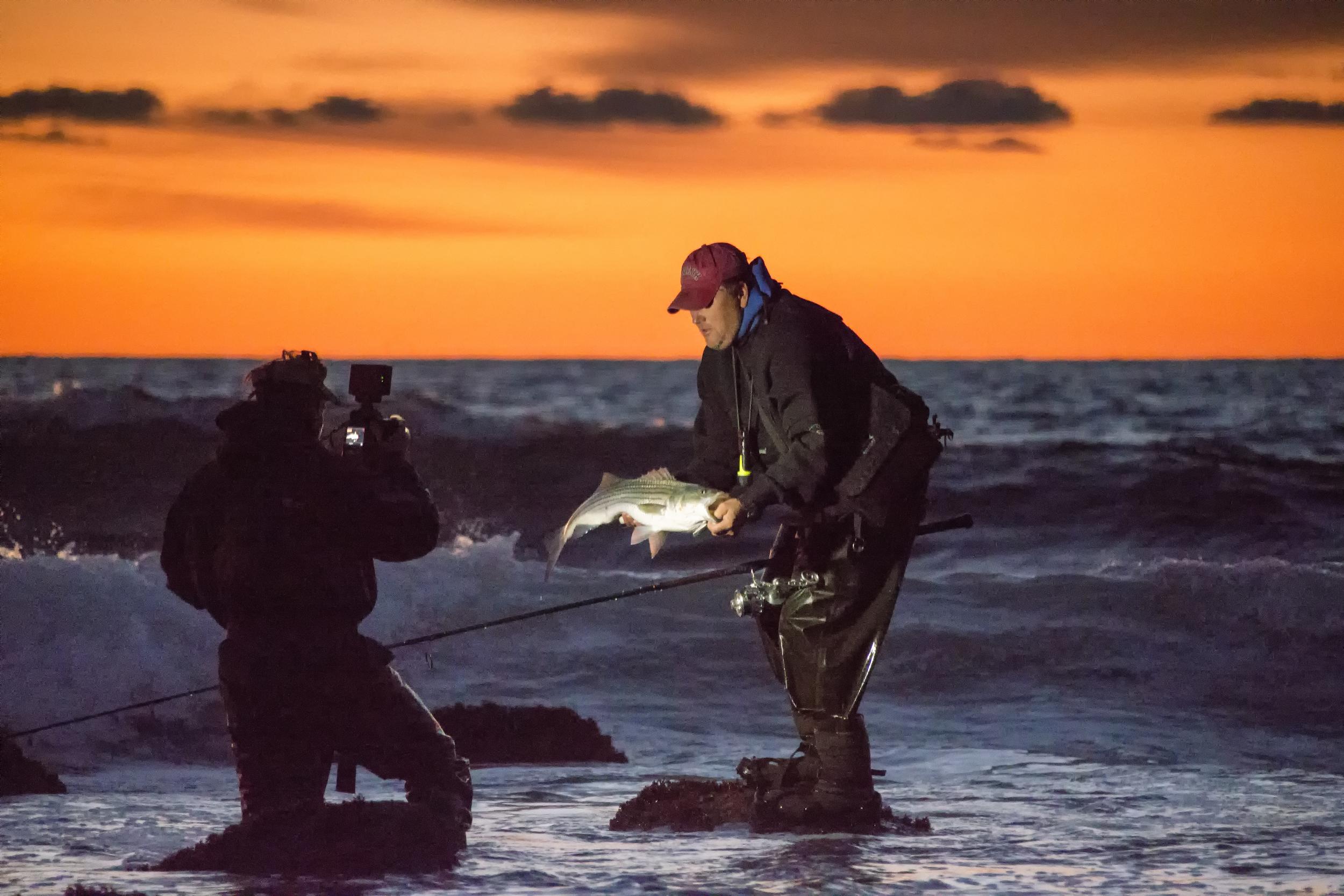 bil fish sunrise show.jpg