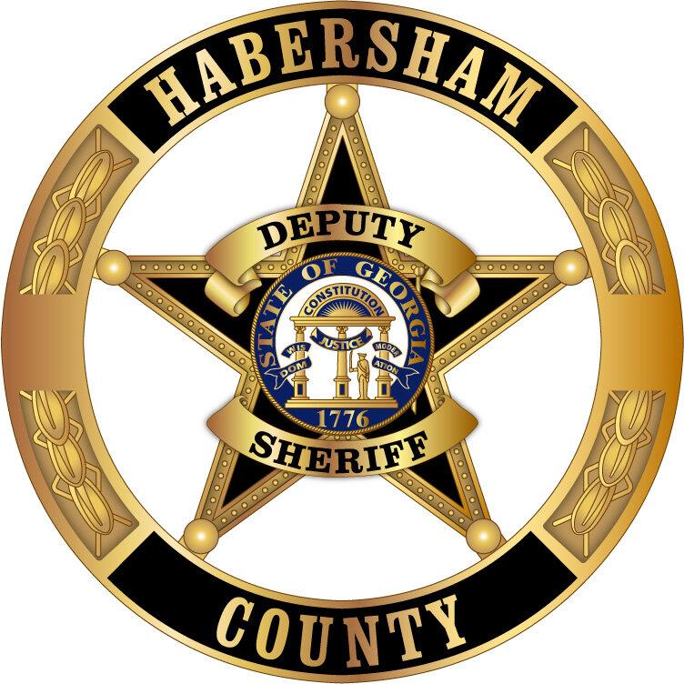 C-148372 Habersham County Sheriff New Department Badge Georgia MC AR.JPG