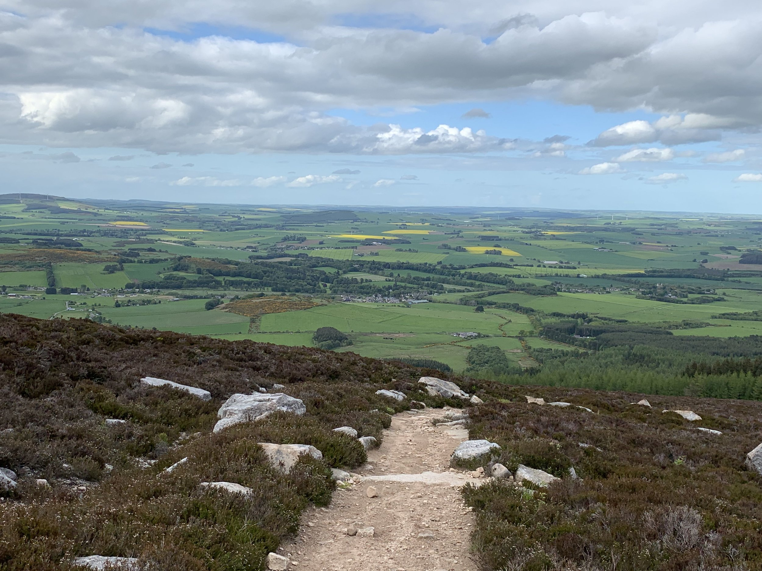 View from the top of Bennachie in Aberdeenshire, Scotland. Photo by Paul Vasile
