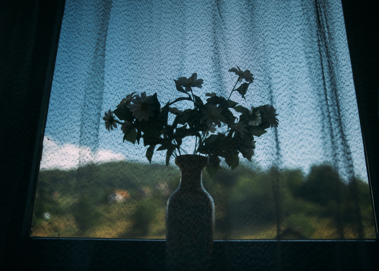 A vase of fake flowers sits in the window of Andrej's home in the Republic of Srpska.
