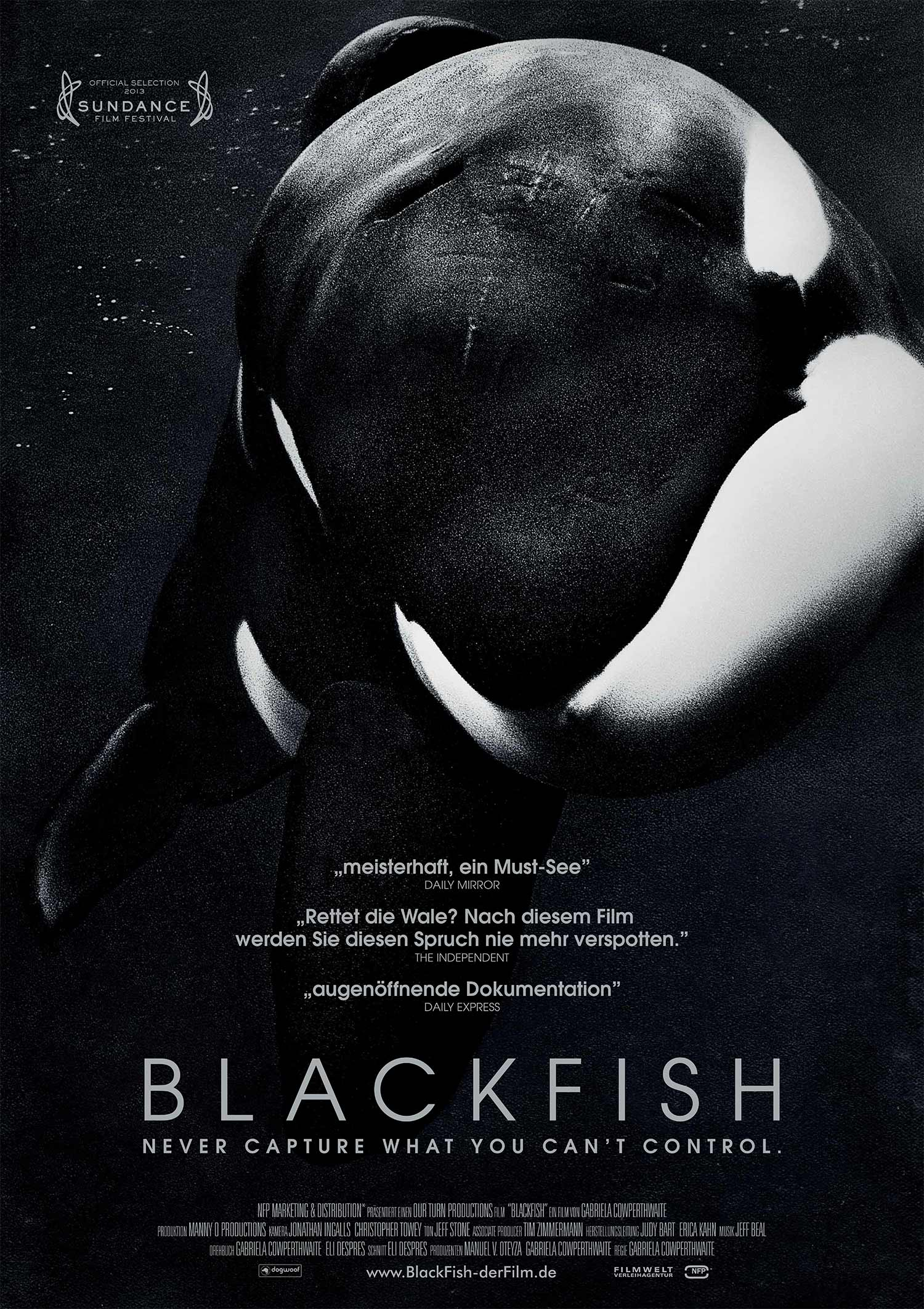 "NFP*<a href=""/blackfish"">→</a><strong>Adaption</strong>"