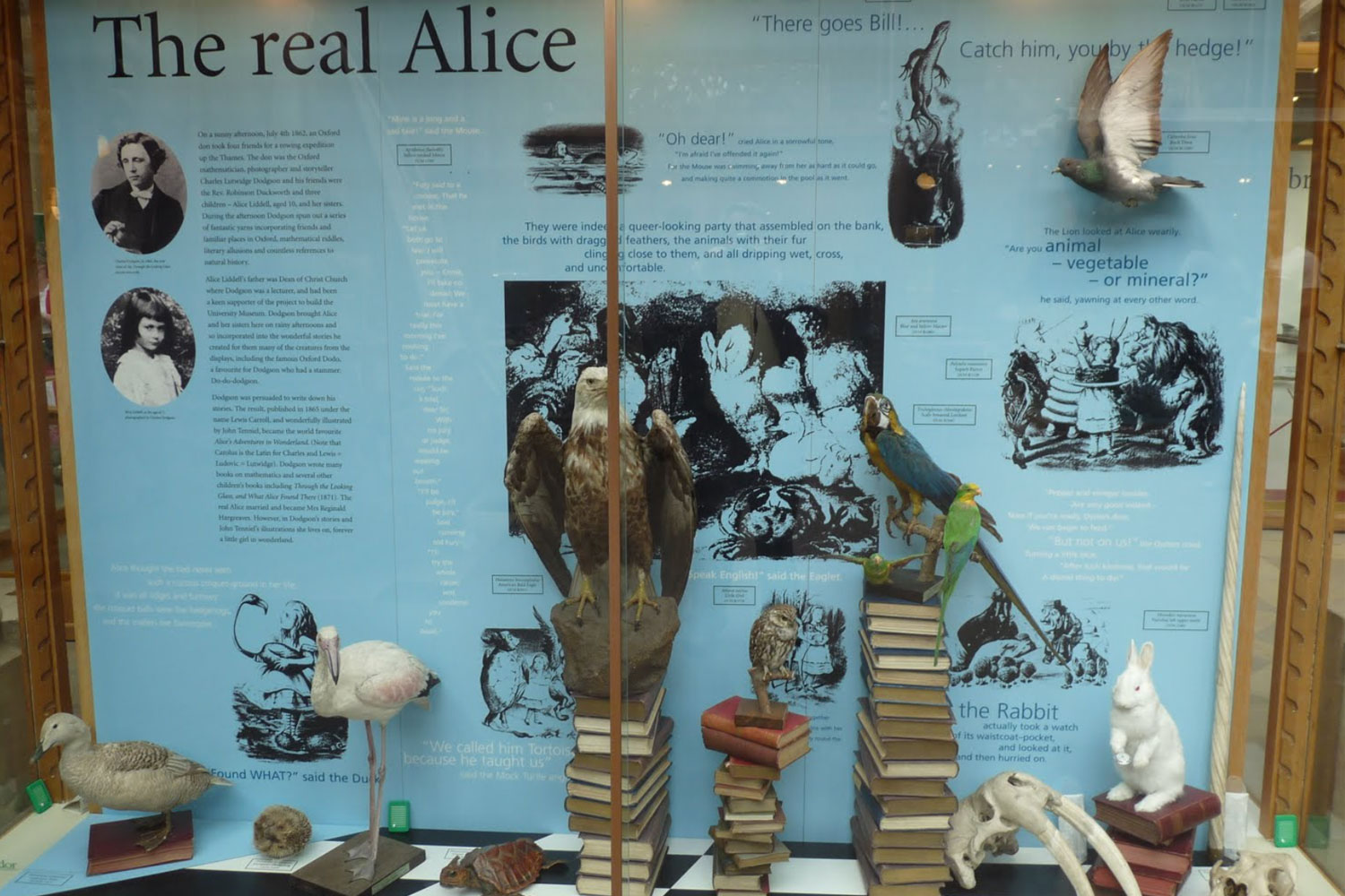 Display dedicated to the museum's connection with Alice in Wonderlands author