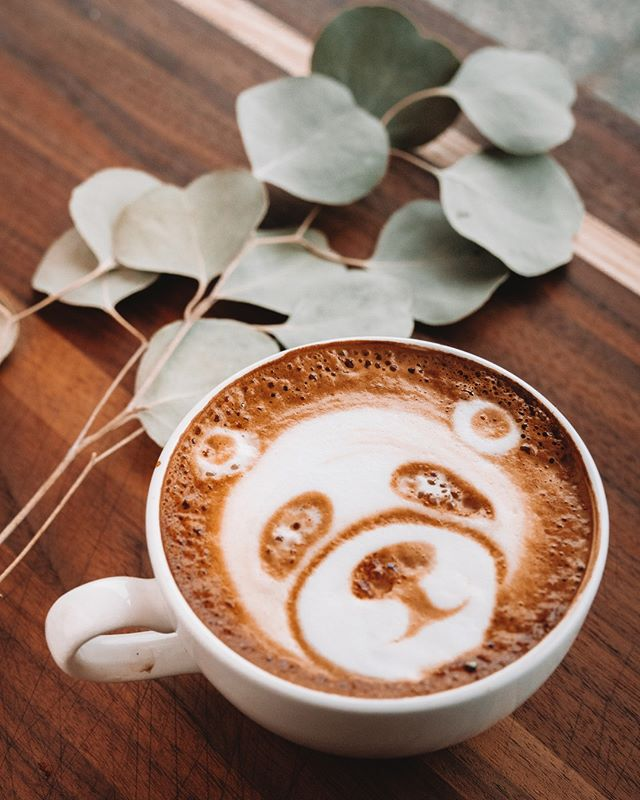 Come here you big, beautiful cup of coffee & lie to me about how much we are going to get done today. 🐼