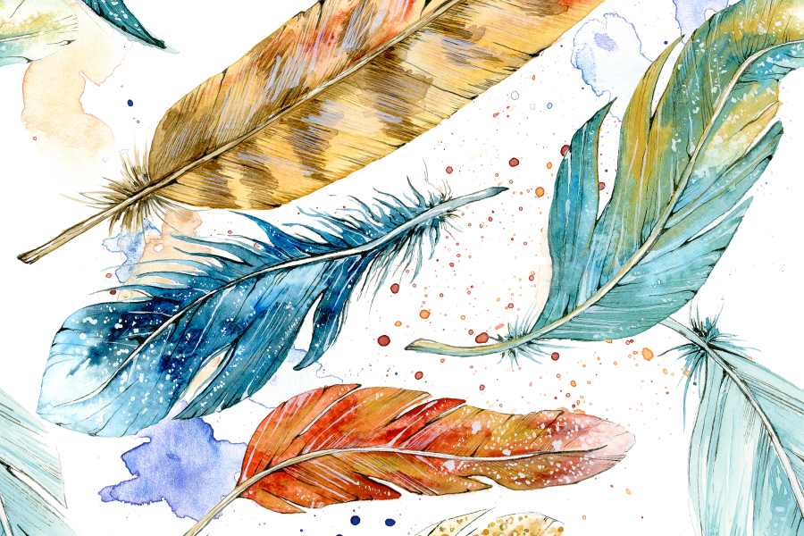 Feathers Pattern_900x600.png