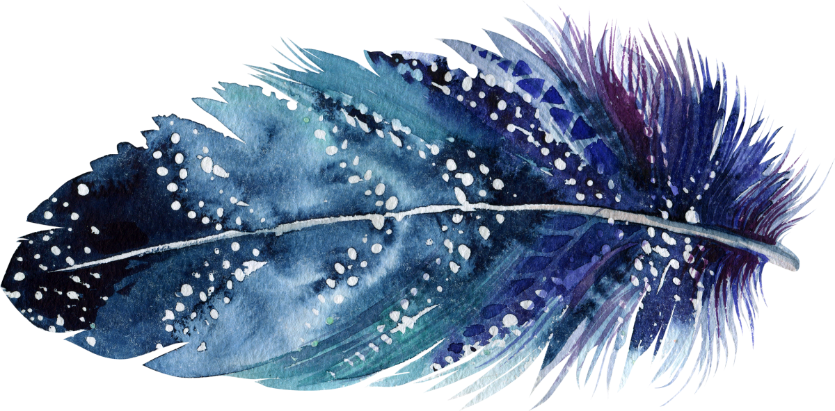 15 feather_1200x592.png