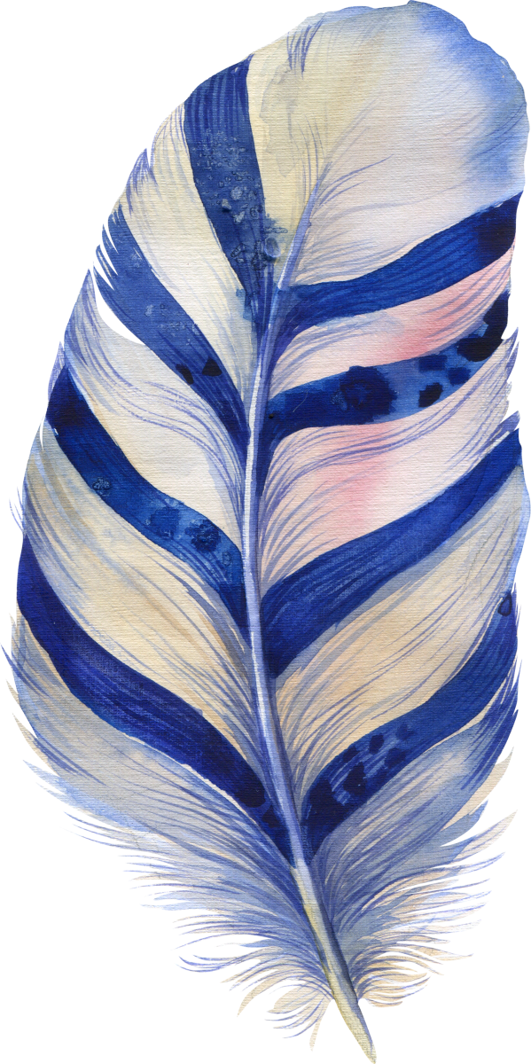8 feather_599x1200.png