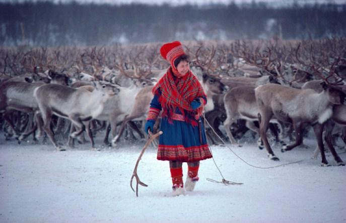 Sami Reindeer Woman, source  Arctic Photo