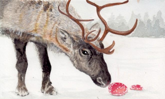 Reindeer and Mushrooms.jpg