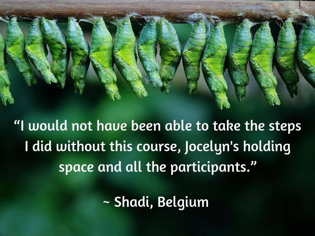 Testimonial - Shadi.jpg