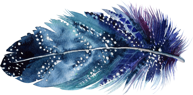 15 feather_640x316.png