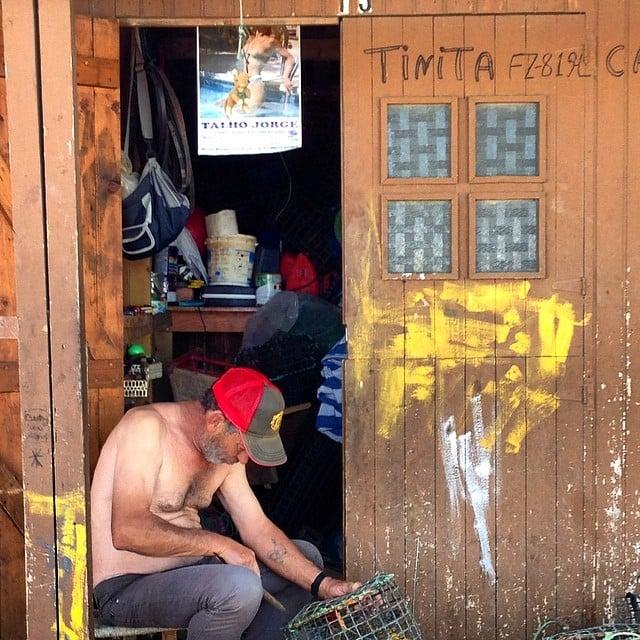 Man utd fisherman in Fusetta