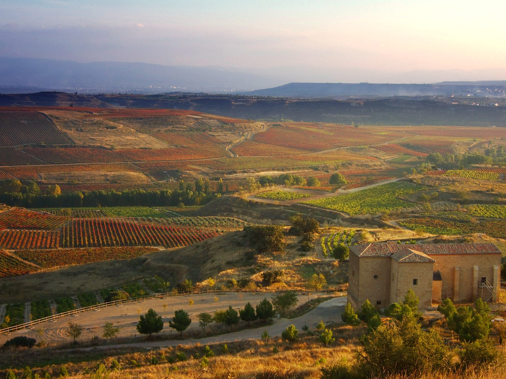 la-rioja-wine.jpg