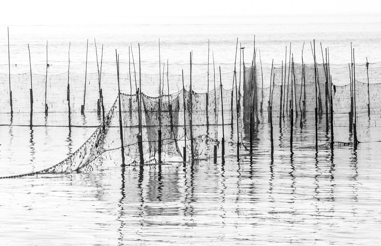 bay of fundy b&w weirs_153