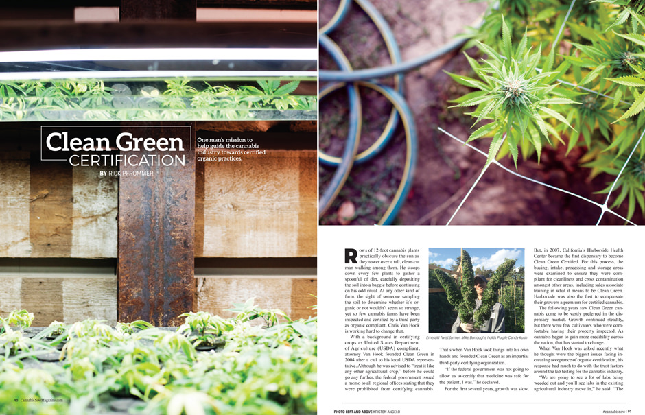 Cannabis Now, Issue 19